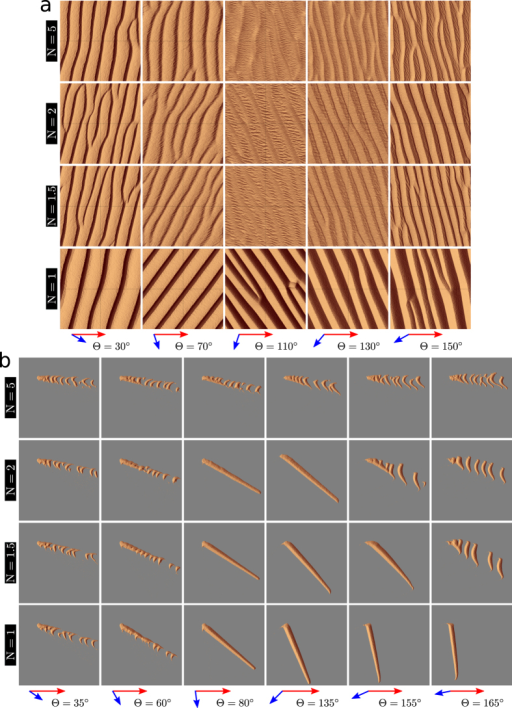 Steady-state dune field morphologies in the parameter space {θ, N} of bidirectional wind regimes for two conditions of sand availability.(a) Dunes grow in height and wavelength from a flat bed with no restriction in sand availability; (b) Dunes extend or propagate on a non-erodible ground from a localized sand source. The red and blue arrows show the sand flux vectors of the dominant and secondary winds, respectively. In all cases, the dominant wind blows from left to right. The non-erodible ground is shown in gray. The cellular space has a square basis of side L = 600 l0. As shown by the orientation of the superimposed bedforms in (a) and the orientation of the finger tip in (b), images are taken after the secondary wind at the end of the cycle of wind reorientation.