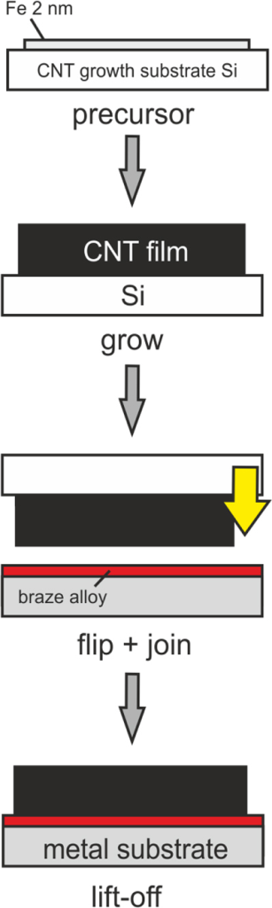 Schematic, different stages of the fabrication of active brazed CNT–metal joints.
