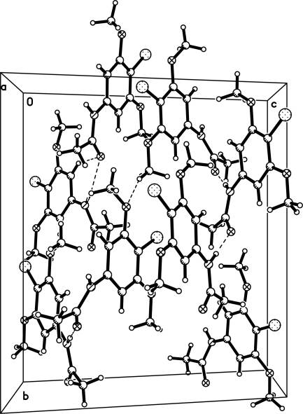 The crystal packing of (I), viewed along the a-axis. Hydrogen bonds are shown as dashed lines.
