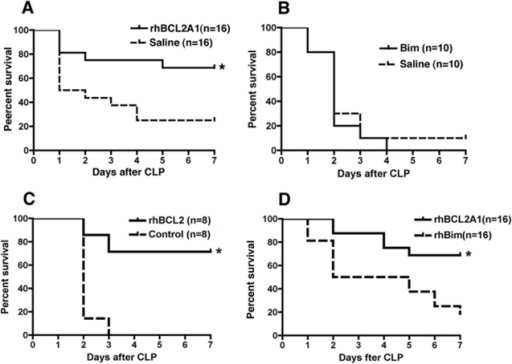 Treatment with rhBCL2A1 or rhBCL2 protein improves survival following CLP.Mice were subjected to CLP and followed for 7 days. An assessment table was used as a surrogate marker for death and the animals euthanized according to approved criteria. (A) Mice were treated by i.p. injection of 1 µg rhBCL2A1 or saline 18 hours prior to CLP and then every 12 hours for 3 consecutive days. Treatment with rhBCL2A1 conferred significant protection compared to saline. *p = 0.012. (B) Mice were treated by i.p. injection of 1 µg rhBim or saline 18 hours prior to CLP and then every 12 hours for 3 consecutive days. Treatment with rhBim did not improve survival compared to saline. (C) Mice were treated by i.p. injection of 1 µg rhBCL2 or 0.5 µg of rhUbiquitin at 18 hours prior to CLP, at time of CLP, and then every 12 hours for 3 consecutive days. Treatment with rhBCL2 conferred significant protection compared to rhUbiquitin *p = 0.003. (D) Mice were treated by i.p. injection of 1 µg rhBCL2A1 or rhBim at 18 hours prior to CLP and then every 12 hours for 3 consecutive days. Treatment with rhBCL2A1 conferred significant protection compared to rhBim. *p = 0.005.