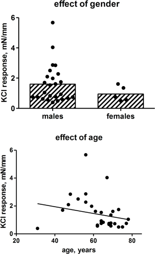 Effect of gender and age on contractile responses to 50 mM KCl. Each data point represents one patient (25 males, 5 females, 1–6 strips per patient), whereas the bars in the upper panel represent the group means.