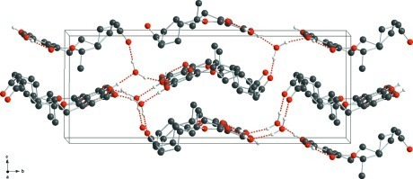 : View of the unit cell of the title compound, showing the hydrogen-bonded network. Hydrogen bonds are drawn as dashed red lines.