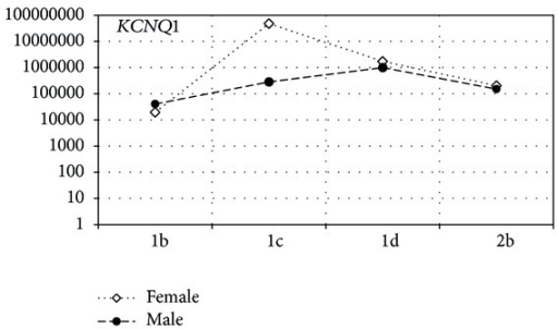 The ratio of mRNA copy number for KCNQ1 in the female and male groups of LQTS patients. The x-axis shows type and subtype of LQTS, and the y-axis shows the average values of mRNA copies of the genes.