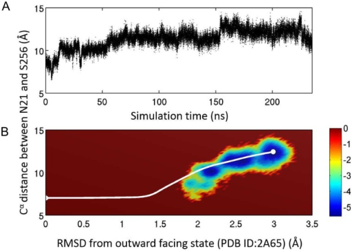 Comparison with all-atom simulation results.A. Time trace of the distance between  atoms of residues 21 and 256 from a 235 ns long conventional MD simulation of the fully solvated system. The simulation was started from a structure obtained from a targeted MD simulation originated from the OFc state. The system undergoes a spontaneous transition to the IFo state. B. Comparison of the ANMPathway method and all-atom MD in the space of two order parameters. The all-atom MD results are shown as a pseudo free energy landscape , where P is the 2D distribution. The color-scale goes from blue (low energy) to red (high energy). The pathway predicted by ANMPathway (white line) goes mostly through the low energy regions of the free energy landscape.
