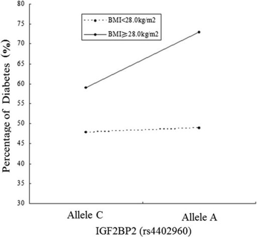 The interaction analysis of BMI and SNP (rs4402960 with the C/A allele) for diabetes.