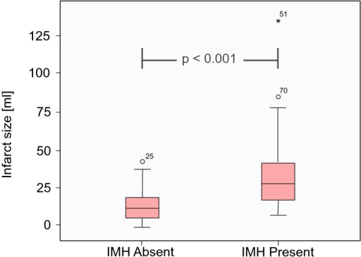 Relationship between infarct size and haemorrhage: the IMH group had significantly larger mean infarct sizes (32.6 ± 20.3 ml vs. 12.9 ± 9.5 ml, P < 0.001) at the LGE sequences