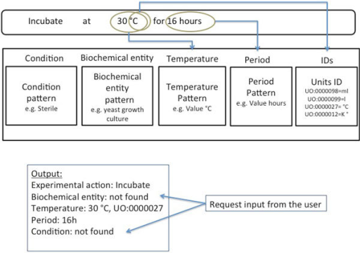 "The identification of descriptors of experimental actions in the text. The Translator engine searches the text for the descriptors defined in EXACT2. Where possible values for the specified descriptors are extracted, and such ambiguous expressions as overnight are resolved. In this example the value of the descriptor temperature is 30°C and assigned with the ID: ""UO:0000027"" from the Units Ontology (see [39])."