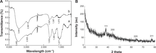 Characterization of silver nanoparticles–chitosan composite spheres by FTIR and XRD.Notes: (A) The FTIR spectrum, a represents Ag@chitosan, b represents chitosan and (B) the XRD graphs of the fabricated silver nanoparticles–chitosan composite spheres.Abbreviations: FTIR, Fourier transform infrared spectroscopy; XRD, X-ray diffraction; au, arbitrary unit.