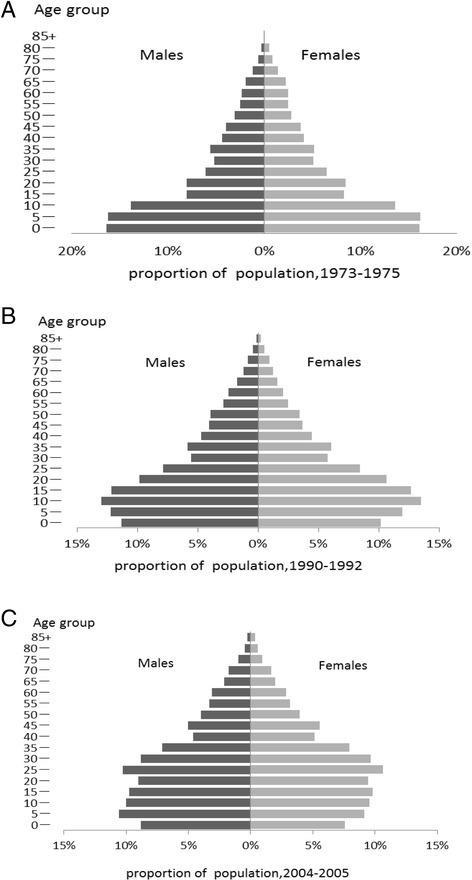 The people pyramid of Xuan Wei in three periods. a composition of the population(horizontal axis) and age groups(vertical axis) in 1973–1975. b composition of the population(horizontal axis) and age groups(vertical axis) in 1990–1992. c composition of the population (horizontal axis) and age groups(vertical axis) in 2004–2005