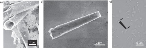 Hybrid microbiorobots. (a) and (b) SEM images of electrochemically fabricated polymer and microtubes, respectively. (c) Bright field image of a biohybrid motor with a single E. coli bacteria trapped inside a microtube.
