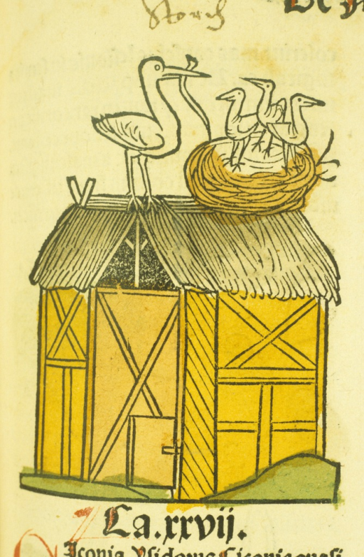 <p>Hand-colored woodcut of a stork feeding three newly-hatched storks in a nest on the roof of a barn.</p>