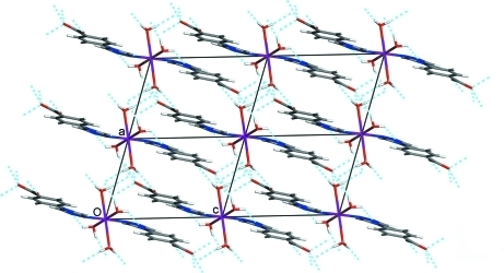 View of the three-dimensional network of the title compound, built by hydrogen bonds (dashed lines).
