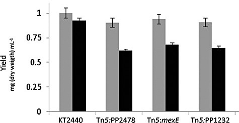 Growth yield of P. putida KT2440 and several isogenic mutants in TNT‐free and TNT‐saturated medium. Cultures were inoculated at ∼0.05 OD660 and incubated at 30°C for 24 h with shaking (150 r.p.m.) in a Kühner incubator. Grey bars represent growth in TNT‐free M9 minimal medium. Black bars represent growth in TNT‐saturated glucose‐supplemented M9 minimal medium.