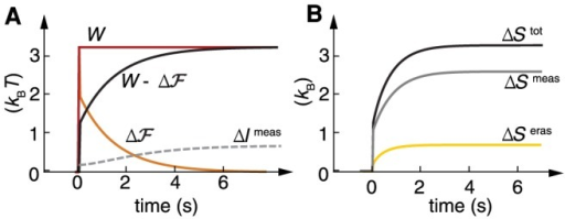 Thermodynamics of adaptation in an equilibrium SAS.(A) Energetic cost as a function of time given by the work  provided by the environment (red), free energy change of the system  (orange), and dissipated work  (black), compared to the measured information  (grey dashed), which gives the lower bound at every time. (B) Total entropic cost  (black) and decomposition in measurement  (gray) and erasure  (yellow). Parameters as in Fig. 3.