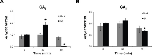 Response of At1g35610 and At3g13760 to GA3 treatment.The transcript levels of (A) At1g35610 and (B) At3g13760 were detected in 12-day-old WT seedlings at the indicated time points upon treatments with 10 µM GA3. The mock treatment was done using ethanol. The expression levels were normalized against TUB expression. Data presented here depict mean from three independent biological replicates with error bars representing SD. Bars with asterisks are significantly different from the mock treatments at the corresponding time points, as per Student's t-test (P ≤ 0.05).