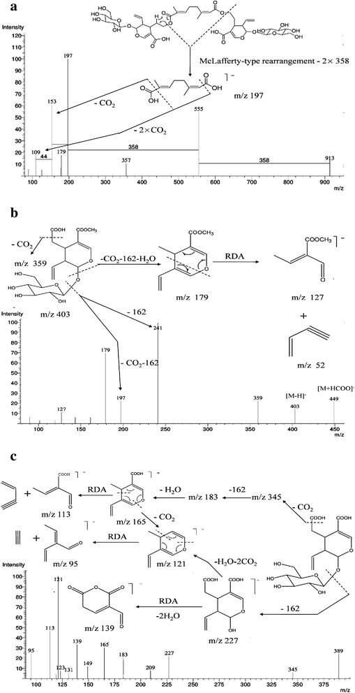 The MS2spectra of the [M-H]−ions for (a) rhodenthoside A, (b) secoxyloganin and (c) secologanoside.
