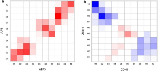 Deciphering interaction type from co-expression patterns. a, b The two-dimensional grids are constructed for two selected gene pairs with known activating or inhibitory effect on each other. The color density for each cell in the grid represents the computed PMI for that cell multiplied in the occurrence probability of the cell and corresponding rescaling value (determined based on the rescaling matrix). The PMI and occurrence probability is calculated based on the associated transcriptome data. Red indicates positive score and blue represents negative score (defined based on the M3 rescaling matrix). SIREN score is determined by summing up the calculated values for each combination of bins. a For two example genes with known activating relationships (JUN and ATF3), cells defined as activating have non-zero values and cells defined as inhibitory relationship, have zero values. b This situation is reversed for two genes with known inhibitory relationship (ZEB1 and CDH1).