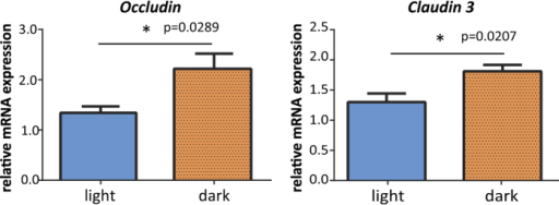 Tight junction (TJ) mRNA expression levels of Occludin (Ocln) and Claudin 3 (Cldn3).Jejunum tissues were collected from BALB/c mice that were sensitized but were not given any oral challenge with ovalbumin in the light period or the dark period. The mRNA expression levels of the TJ proteins Ocln and Cldn3 were measured using real time RT-PCR. The data are presented as means ± SEM (n = 5). *p < 0.05 light period group versus dark period group, calculated with a t-test.