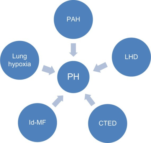 Schematic figure representing the etiologies of PH.Abbreviations: PH, pulmonary hypertension; PAH, pulmonary arterial hypertension related to idiopathic, heritable, drug-induced, or associated PH; LHD, left heart disease; CTED, chronic thromboembolic disease; Id-MF, idiopathic, multifactorial etiology.