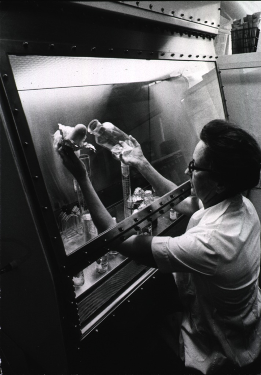 <p>A woman is preparing tissue cultures under sterile conditions.</p>