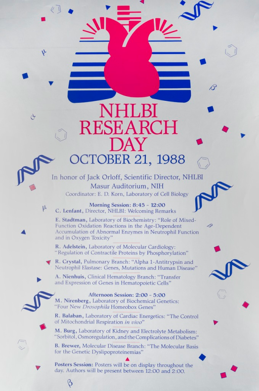 <p>Silver poster with red and blue lettering announcing Research Day, Oct. 1988.   Also lists date, location, coordinator, times, and speakers.  Poster primarily text.  Red and blue National Heart, Lung, and Blood Institute logo at top of poster is most prominent image.  Small geometric shapes, Greek letters, and double helixes are scattered at edges of poster.</p>