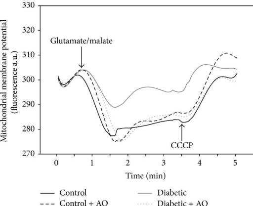 Effect of avocado oil on mitochondrial membrane potential (ΔΨm). Representative traces of fresh isolated brain mitochondria from diabetic rat. Membrane potential was expressed in fluorescence arbitrary units (a.u.). The traces are typical of four experiments.