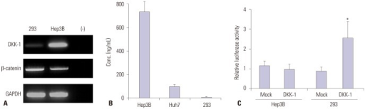 DKK-1 expression in Hep3B, Huh7, and 293 cells. (A) RT-PCR analysis showed high DKK-1 mRNA expression in Hep3B cells, low in 293 cells, and none in the negative control. (B) The DKK-1 concentration secreted in the culture media, determined by ELISA, was high in Hep3B cells, moderate in Huh7 cells, and low in 293 cells. (C) Following DKK-1 transfection, luciferase assays revealed that the β-catenin transcriptional activity was induced in 293 cells. *p<0.01. DKK-1, dickkopf-1.