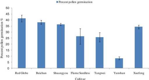 Pollen germination rate (percentage ± SE after 24 h) of seven cultivars cultured on pollen medium. Highest percent germination was observed for Red Globe. There were no significant differences (P ≤ .05) between Red Globe, Beichun, Shuangyou, and Xuefeng.