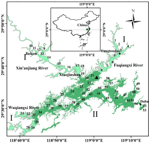 Location of Qiandaohu in China and the locations of Chun'an meteorological station (▲) and the transparency observation sites from 1988 to 2013 showing the two data sources: (●) from 1988–2013, the observation sites were located in one inlet (Hangtoudao), and the only outlet of the reservoir (Daba) was used for long-term specific observations; (○) in 2013 and 2014, the observation sites were evenly distributed around the reservoir in winter, spring and summer. The 60 sites were classified into two groups. Type I: located in the adjacent waters of the three incoming rivers, including sites 1–19 and 28–33. Type II: located in the main body of the reservoir, including sites 20–27 and 34–60.