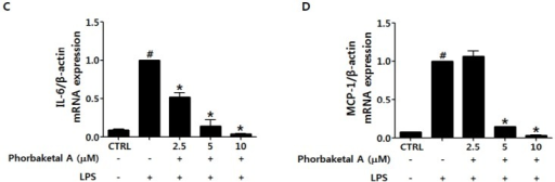 Effects of phorbaketal A on the expression of pro-inflammatory cytokines in LPS-stimulated RAW 264.7 cells. (A–D) RAW 264.7 cells were pretreated with different concentrations of phorbaketal A (2.5, 5, and 10 μM) for 1 h and then stimulated with LPS (1 μg/mL) for 8 h. The mRNA levels of tumor necrosis factor-alpha (TNF-α) (A); interleukin-1beta (IL-1β) (B); IL-6 (C); and monocyte chemotactic protein-1 (MCP-1) (D) were determined by real-time RT-PCR. Data are presented as the means ± SD of three independent experiments. Statistical analysis was carried out using the one-way ANOVA followed by the Tukey's test. #p < 0.05 vs. CTRL group. * p < 0.05 vs. LPS-stimulated group.