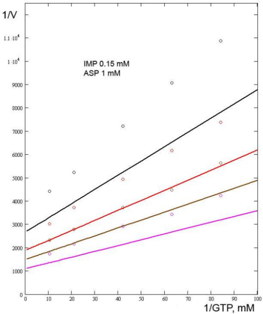 Relationships between the reaction rate and the concentration of GTP in the presence of SUCC. SUCC concentrations were (black line and circles) 50 mM; (red line and circles) 25 mM; (brown line and circles) 12.5 mM; (crimson line and circles) 0. Experimental data from [7].
