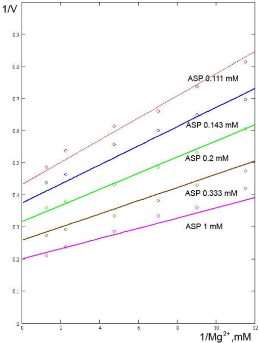Relationships between the reaction rate and concentration of Mg2+ ions at varying concentrations of ASP. Experimental data from [9].
