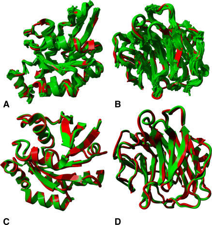 Reconstruction of human protein backbones using BriX classes.(A, B) Local fit approximation for the reconstruction of the set of human protein structures: some examples. The backbones (in red) of α G25K GTP-binding protein (A) and β human C-reactive protein (B) fully covered with BriX classes (green). The covering algorithm selected 35 and 40 redundancy filtered fragment classes to describe the respective structures. (C, D) Global fit approximation for the reconstruction of the set of human protein structures: some examples. A backbone trace of α G25K GTP-binding protein (C) and β human C-reactive protein (D). The target proteins are shown in red and the approximations are shown in green. The overall RMSD is 0.4542 Angstrom and 0.5614 Angstrom, respectively.