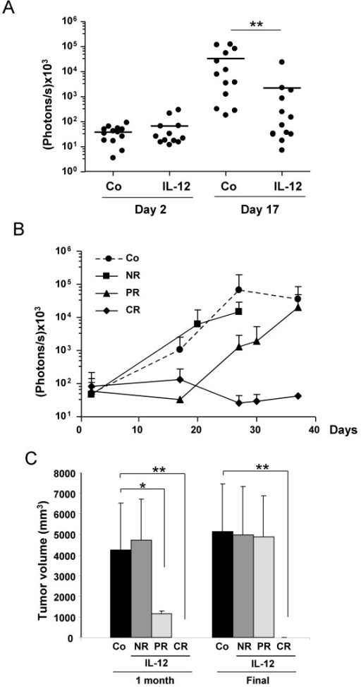 Antitumor effect of IL-12 monitored by BLI. MC38Luc1 cells (5 × 105) were injected in the liver of C57BL/6 mice (n = 26). After verification of cell engraftment, the vector GL-Ad/RUmIL-12 was injected intravenously at 2.5 × 108 iu/mouse in half of the mice, and IL-12 expression was activated by mifepristone one week later. A. – Quantification of light emission before virus injection (day 2) and 7 days after initiation of IL-12 expression (day 17) in control (Co) and treated groups (IL-12). B. – Monitoring of tumor progression by BLI. Control group is represented as a dotted line. Three subgroups were defined among treated animals: non-responders (NR), mice with partial response (PR) and complete response (CR). Differences were statistically significant (p < 0.01) between Co and PR groups during days 20 to 30. Light emission from the CR group remained significantly lower until the end of the experiment. C. – Average tumor volume of the different groups one month after cell implantation, and at the time of sacrifice or spontaneous death. No evidence of tumor was observed in the CR group. Error bars represent standard deviations. * p < 0.05; ** p < 0.01.