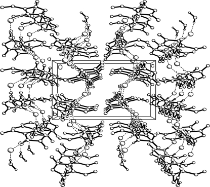 Perspective view of the supramolecular network built from strong intermolecular hydrogen bonds (dashed lines). H atoms not involved in hydrogen bonds have been omitted.