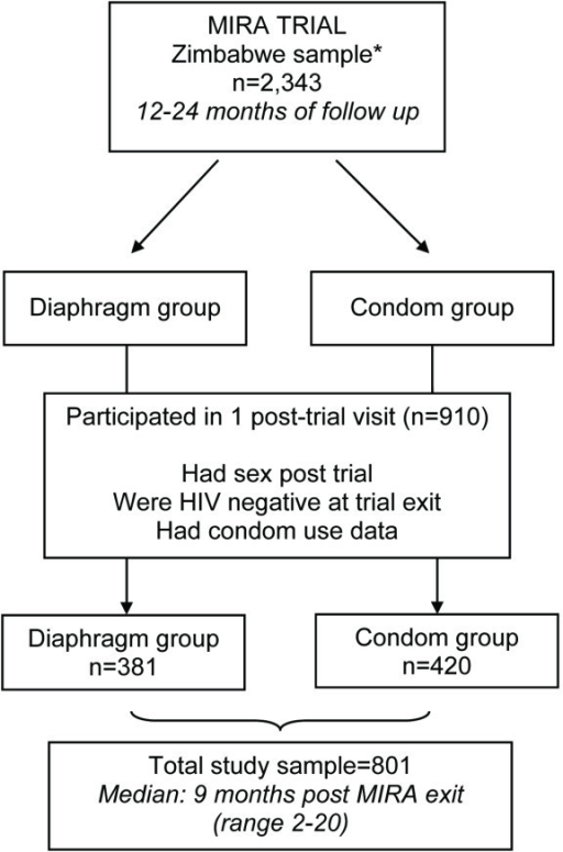 Study sample flow chart. *This includes women who remained HIV seronegative throughout the duration of the trial, and excludes those (n = 31) who had no MIRA follow-up data.