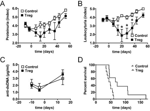 Regulatory T cells (Treg) prolong drug-induced disease remission. (A-D) Changes in clinical parameters and survival of (NZBxNZW) F1 mice with active disease after induction of remission with glucocorticosteroid (GC)/cyclophosphamide (CTX) and after an additional adoptive transfer of 1.5 × 106 Treg/mouse (Treg) compared to age-matched mice that received only GC/CTX and PBS (Control). (A-C) Average proteinuria score (A), leukocyturia score (B) and levels of antibodies against ds-DNA (C) determined at the indicated time points during the study. Error bars indicate standard error of the mean (SEM) (*P <0.05; Treg vs Control at the indicated time point). (D) Survival time is presented as a Kaplan-Meier curve (P = 0.01; Treg vs Control). (A-D) Data are the summary of two to three independent experiments, with eight to ten mice per group in total.