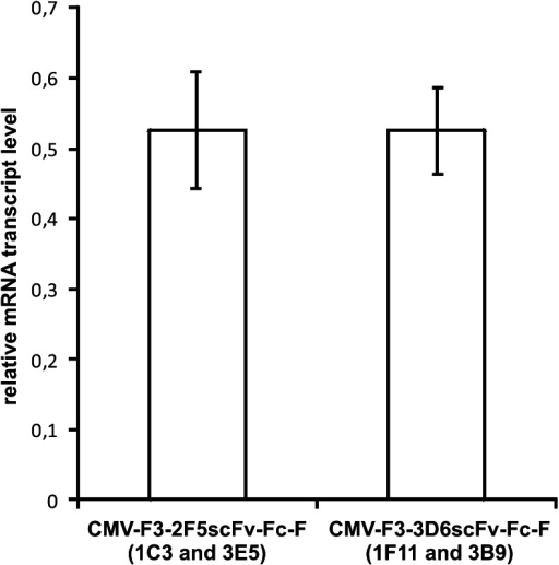 qPCR analysis of mRNA transcript level of two selected 3D6scFv-Fc- or 2F5scFv-Fc-producing RMCE clones cultivated in spinner flasks. Samples were taken at three different days and measured in two technical replicates. Total mRNA was reverse transcribed into cDNA and analyzed by qPCR using probes specific for the Fc sequence or β-actin used as an internal standard. Mean 2−ΔCp values were calculated based on differences of Cp values between β-actin and the Fc sequence. Error bars represent standard deviation