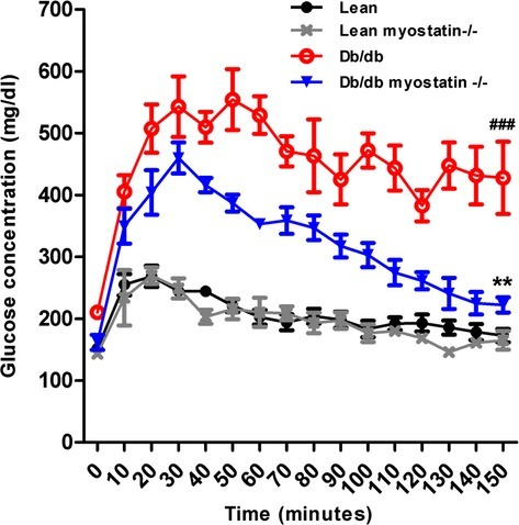 Glucose tolerance test of all groups of male mice. Symbols represent the results from repeated measures by using NCSS software (NCSS, LLC, Kaysville, UT). **P<0.01, lean myostatin−/− versus lean or db/db myostatin−/− versus db/db; ###P<0.001, db/db versus lean or db/db myostatin−/− versus lean myostatin−/−. Data are shown as mean±SEM (n=4). db/db myostatin−/− indicates mice lacking both myostatin and leptin receptor; db/db, obese leptin receptor‐deficient mice heterozygous for myostastin; lean myostatin−/−, myostatin‐ mice heterozygous for leptin receptors; lean, lean dual heterozygotes.