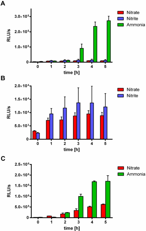 Effect of nitrate and nitrite compared to ammonia on MSX-induced nblA::luxAB or glnB::luxAB expression. (A) nblA::luxAB expression of WT-C 103 cells growing in media with different nitrogen sources within 5 h after MSX treatment (2 µM): 17.7 mM nitrate, 5 mM nitrite and 5 mM ammonia. (B) Highlighting of the results of nblA::luxAB expression of WT-C 103 in nitrate (17.7 mM) or nitrite (5 mM) containing media. (C) glnB::luxAB expression of FAM2 cells in media with nitrate (17.7 mM) and ammonia (5 mM) within 5 h after MSX treatment (2 µM).