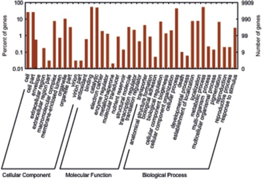 Gene Ontology (GO) categories of the unigenes.Distribution of the GO categories assigned to the D. muscipula transcriptome. Unique transcripts (unigenes) were annotated in three categories: cellular components, molecular functions, and biological processes.