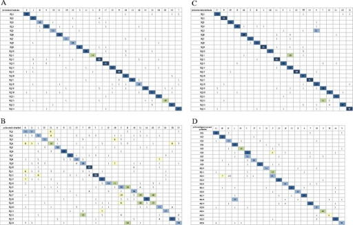 Oxford grids showing conservation of synteny between yellowtail and four model fish. A: medaka, B: zebrafish, C: three-spined stickleback, D: green spotted pufferfish. Each box is highlighted as follows: 0–4: white square, 5–10: yellow square, 11–20: green square, 21–30: sky blue square, 31–40: blue square, more than 40: dark blue square.