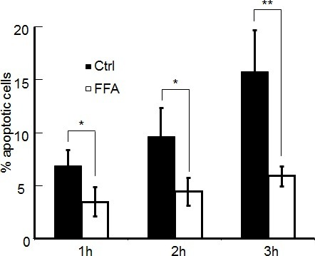 Percentage of apoptotic cells at three time points following focal photodynamic injury in control conditions and in the presence of FFAData are mean ± s.e.m. from n = 3 cultures in each condition.