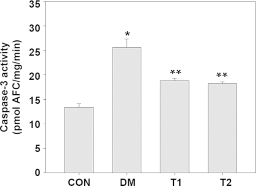 The activity levels of caspase-3 in the retinal tissue samples of the CON, DM, T1 and T2 groups. The activity levels of caspase-3 were significantly elevated in the retinal tissue samples of the DM rats, as compared with the CON group. Following minocycline treatment, the elevated activity levels of caspase-3 in the retinal tissue samples of the DM rats was suppressed (F=27.24; *P<0.01 vs. CON and **P<0.01 vs. DM). No statistically significant difference in the activity levels of caspase-3 was observed between the T1 and T2 treatment groups (P>0.05) CON, normal control group; DM, diabetic retinopathy group; T1, 2.5 mg/kg minocycline treatment group; T2, 5 mg/kg minocycline treatment group.