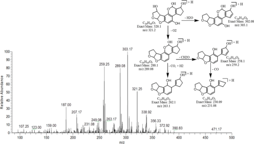 MS/MS Spectra and fragmentation pathway of degraded product with 321.25 m/z.