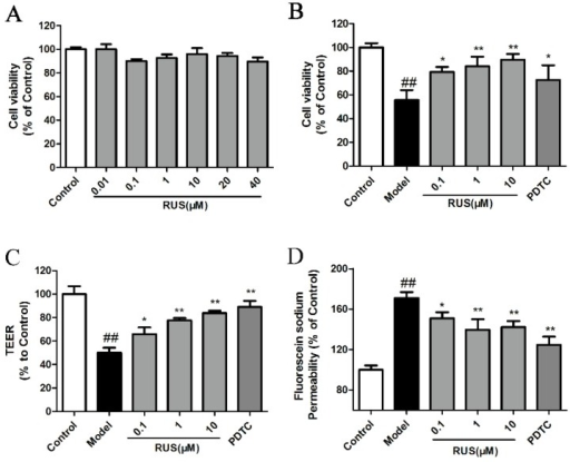 Effects of ruscogenin on the cell viability and barrier function in bEnd.3 cells subjected to OGD/R. (A,B) The bEnd.3 cells were treated with ruscogenin at various concentrations (0.01–40 µM) and the cell viability was measured using the 3-(4,5-dimethylthiazol-2-yl)-2,5-diphenyltetrazolium bromide (MTT) assay in normal conditions, or after 6 h of OGD and 18 h reoxygenation (n = 6); (C,D) the bEnd.3 cells were treated with ruscogenin (0.1–10 µM) and PDTC (10 µM), and subsequently exposed to 6 h of OGD and 18 h reoxygenation. The barrier-protection effect of ruscogenin was detected using TEER and sodium fluorescein assays. (n = 3). The data are expressed as means ± SD. ##p < 0.01 vs. Control, * p < 0.05, ** p < 0.01 vs. Model.