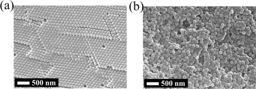 Comparison of the arrangement of nanoparticles on flat alumina substrate.(a) Nanoparticles without peptide (PS-COOH). (b) Nanoparticles with peptide (PS-COO-(RF)4).