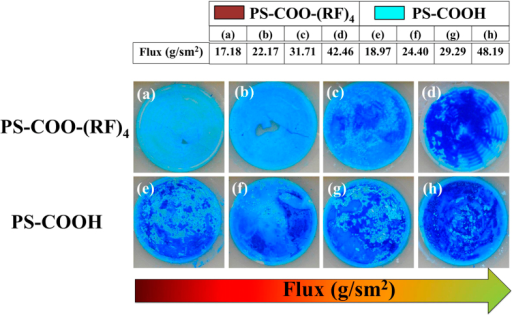 Pictures of the AAO templates after the methylene blue filtration test.(a–d) AAO templates with nanoparticles with peptide (PS-COO-(RF)4). (e–h) AAO templates with nanoparticles without peptide (PS-COOH). The particles of 150, 60 and 24 nm are embedded together for all templates. The flow flux through membrane has been increased from left to right.