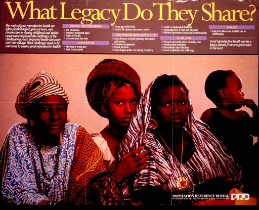 <p>Light brown poster with gold and white lettering.  Title at top of poster.  Caption below title on left side.  Socioeconomic factors that adversely affect women's health at different ages are also listed below the title.  Most of the poster is a color photo reproduction showing three women of varying ages and a female child.  The women all wear traditional African clothing.  Publisher information superimposed on lower right corner.</p>