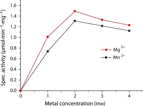 Mg2+ and Mn2+ dependence. The optimum concentration of both metals is 2 mm.